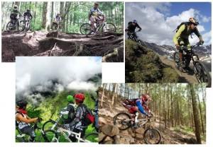 Menjelajahi Alam dengan Sepeda Gunung