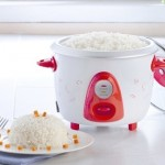 Resep Masakan Yang Bisa Kamu Masak Dengan Rice-Cooker