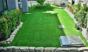 Rumput Sintesis untuk Taman Rumah