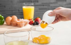 Alat Pemisah Kuning Telur Dengan Putihnya