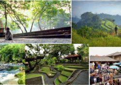 Tempat di Ubud Bali Yang Jadi Juara