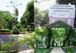 Wisata ke Taman Flora Surabaya