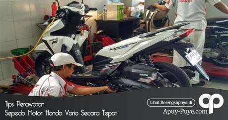 Service Honda Vario